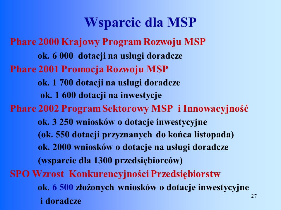 27 Phare 2000 Krajowy Program Rozwoju MSP ok. 6 000 dotacji na usługi doradcze Phare 2001 Promocja Rozwoju MSP ok. 1 700 dotacji na usługi doradcze ok