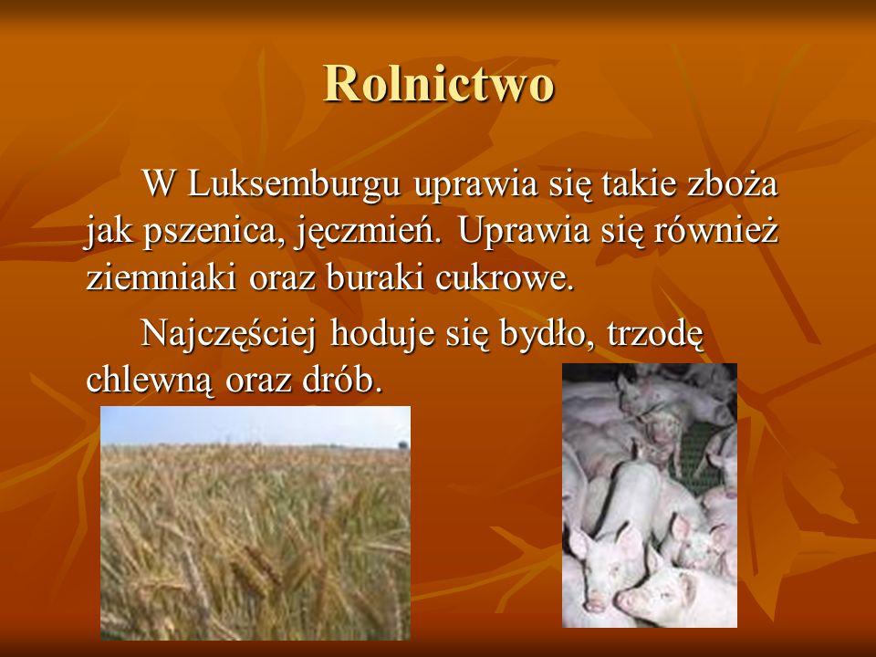 Rolnictwo W Luksemburgu uprawia się takie zboża jak pszenica, jęczmień. Uprawia się również ziemniaki oraz buraki cukrowe. W Luksemburgu uprawia się t