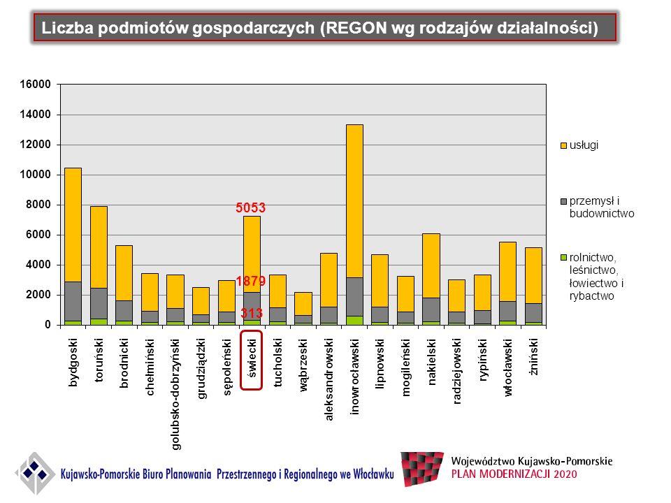 Liczba podmiotów gospodarczych (REGON wg rodzajów działalności) Źródło: Opracowanie własne na podstawie Bank Danych Lokalnych, stan na 2010 r.