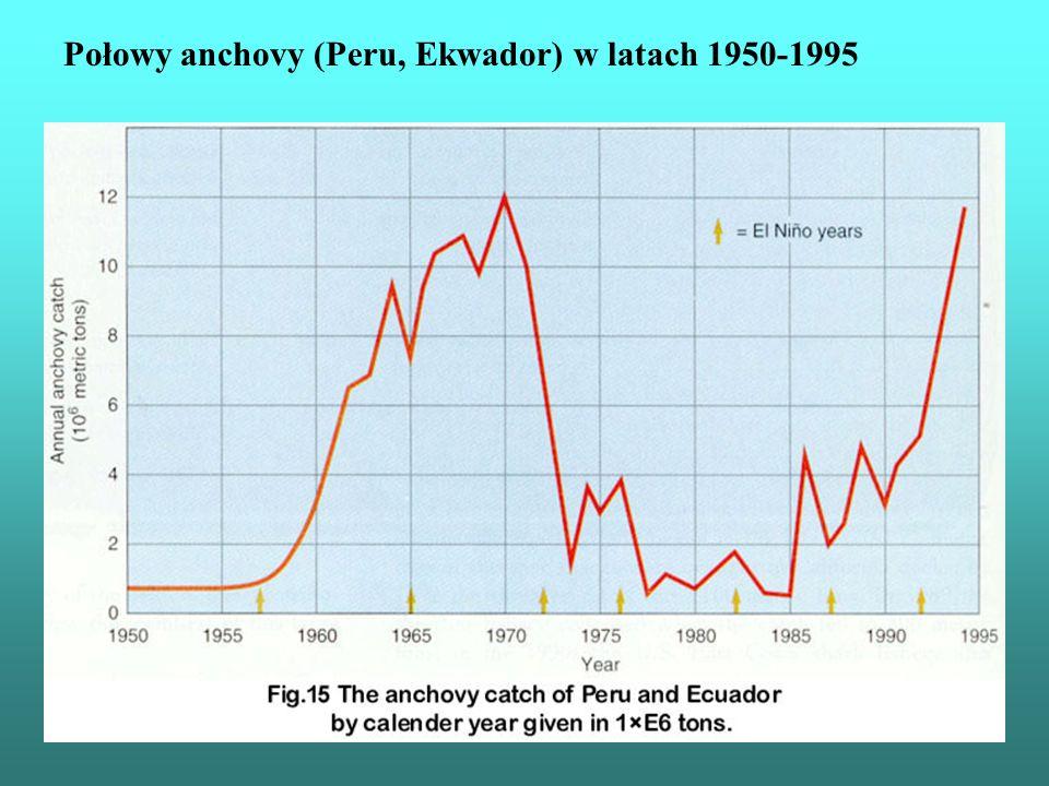 Połowy anchovy (Peru, Ekwador) w latach 1950-1995