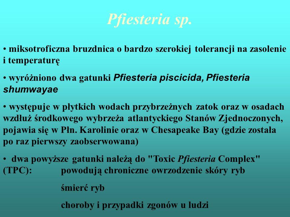 Pfiesteria piscicidaPfiesteria shumwayae bruzdnica ta posiada specyficzny cykl rozwojowy (24 formy, niektóre z nich uwalniają toksyny, inne są nietoksyczne) : stadium cysty stadium ameboidalne stadium aktywnie pływające za pomocą wici (dinospore stage)