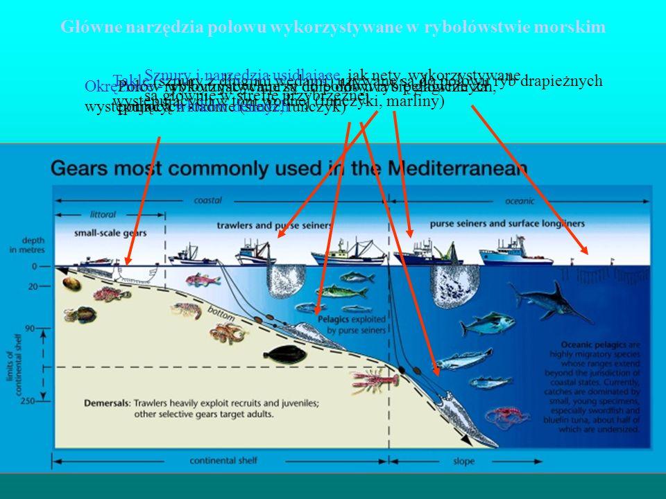 Okrężnice - wykorzystywane są do połowu ryb pelagicznych, występujących stadnie (śledź, tuńczyk) Takle (sznury z długimi wędami) używane są do połowu