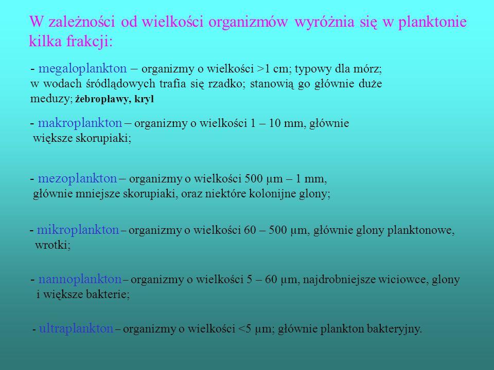W zależności od wielkości organizmów wyróżnia się w planktonie kilka frakcji: - megaloplankton – organizmy o wielkości >1 cm; typowy dla mórz; w wodach śródlądowych trafia się rzadko; stanowią go głównie duże meduzy ; żebropławy, kryl - makroplankton – organizmy o wielkości 1 – 10 mm, głównie większe skorupiaki; - mezoplankton – organizmy o wielkości 500 µm – 1 mm, głównie mniejsze skorupiaki, oraz niektóre kolonijne glony; - mikroplankton – organizmy o wielkości 60 – 500 µm, głównie glony planktonowe, wrotki; - nannoplankton – organizmy o wielkości 5 – 60 µm, najdrobniejsze wiciowce, glony i większe bakterie; - ultraplankton – organizmy o wielkości <5 µm; głównie plankton bakteryjny.