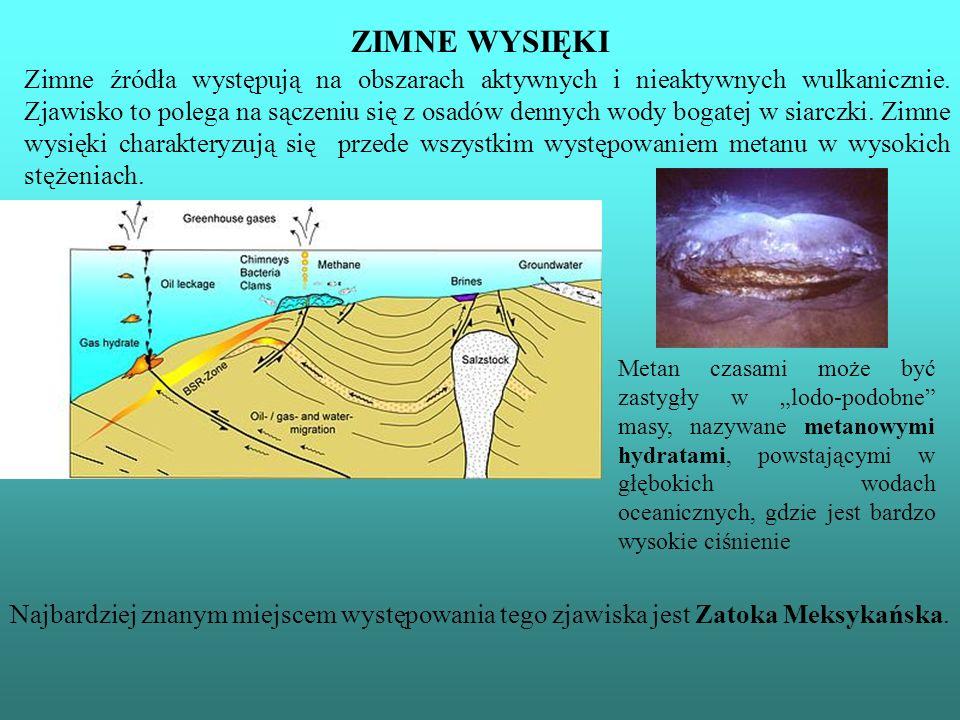 ZIMNE WYSIĘKI Najbardziej znanym miejscem występowania tego zjawiska jest Zatoka Meksykańska. Zimne źródła występują na obszarach aktywnych i nieaktyw