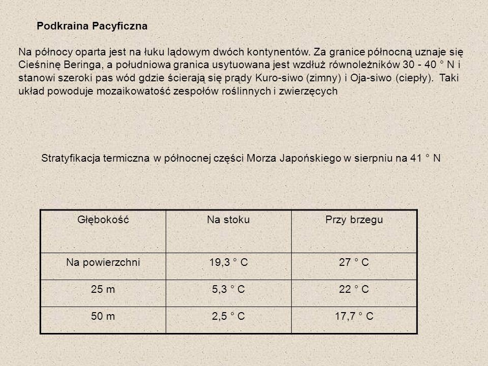 Zooplankton Calanus cristatus - endemit Eucalanus bungii- endemit Widłonogi typowe dla północnej części umiarkowanego Pacyfiku Euphausia pacifica Thysanoessa intermis Endemiczne gatunki z Euphausiaceae o pełnym zasięgu występowania