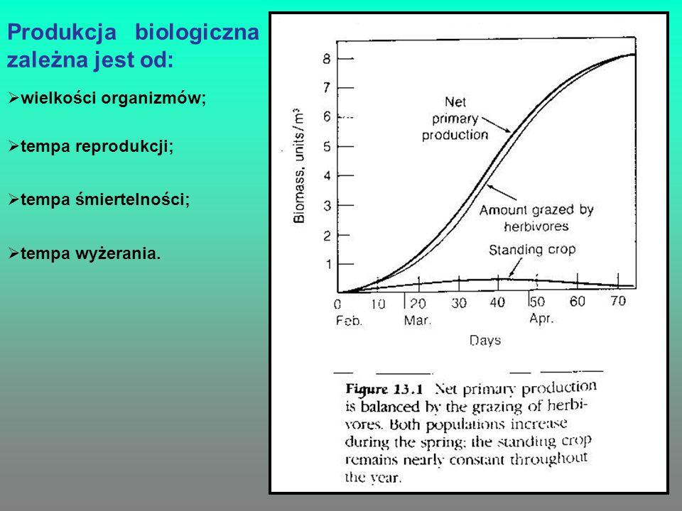 Produkcja biologiczna zależna jest od: wielkości organizmów; tempa reprodukcji; tempa śmiertelności; tempa wyżerania.