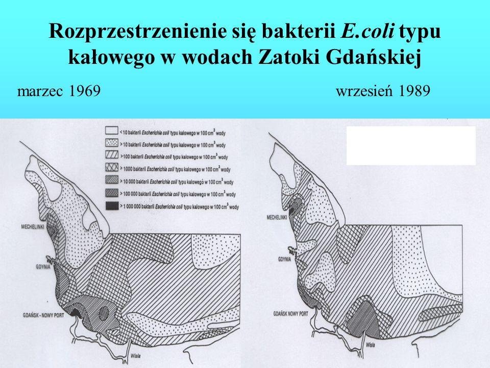 Udziały (%) wskaźnika coli typu kałowego w morskich wodach przybrzeżnych w okresie 1986 – 1989 i w I półroczu roku 1990 3 - Kacza 4 - Swelina i Potok Kamienny, Potok Karlikowski 5 - Potok Oliwski 7 - Strzyża