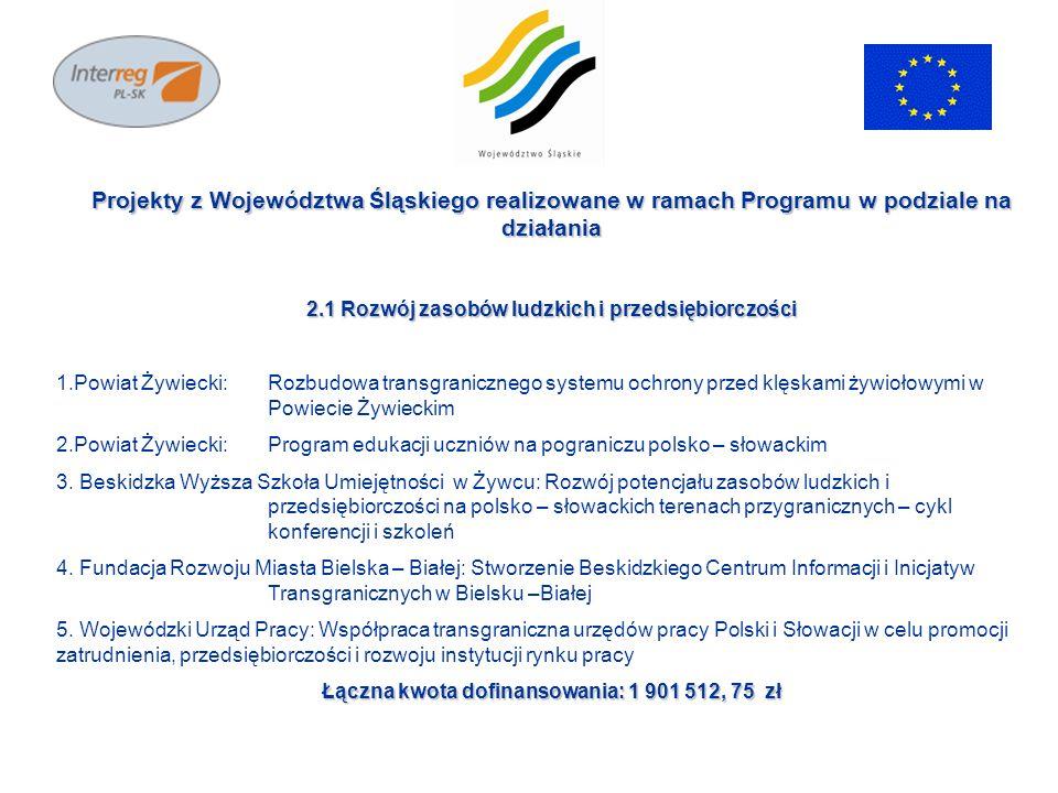 Projekty z Województwa Śląskiego realizowane w ramach Programu w podziale na działania 2.1 Rozwój zasobów ludzkich i przedsiębiorczości 1.Powiat Żywie