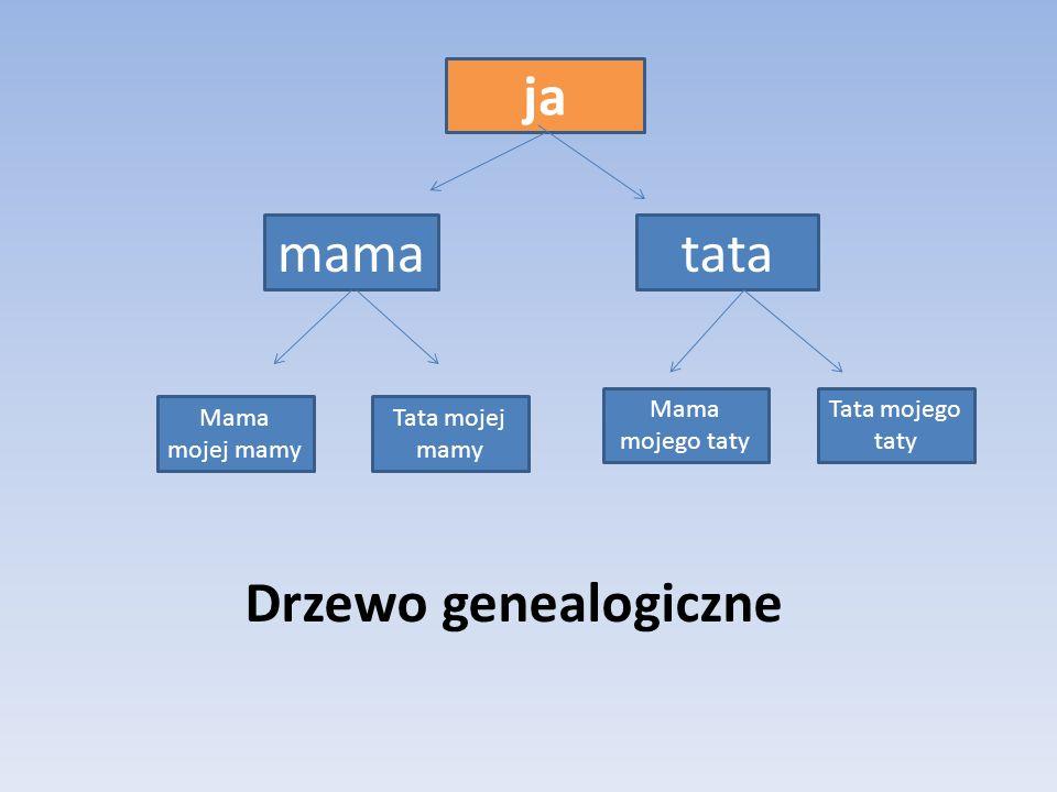 ja Tata mojej mamy Mama mojej mamy tatamama Mama mojego taty Tata mojego taty Drzewo genealogiczne