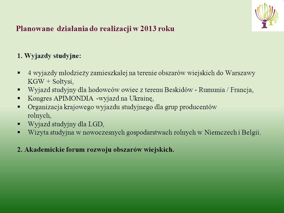 Planowane działania do realizacji w 2013 roku 1.