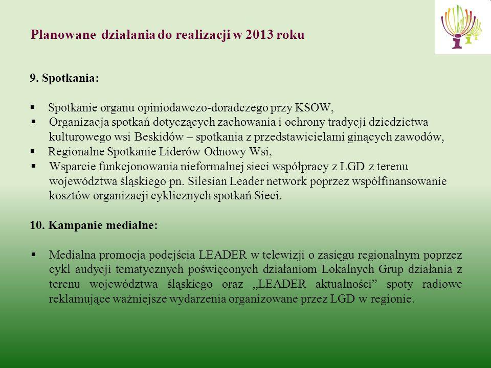 Planowane działania do realizacji w 2013 roku 9.