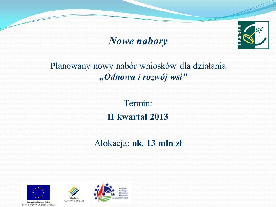 Nowe nabory Planowany nowy nabór wniosków dla działania Odnowa i rozwój wsi Termin: II kwartał 2013 Alokacja: ok. 13 mln zł