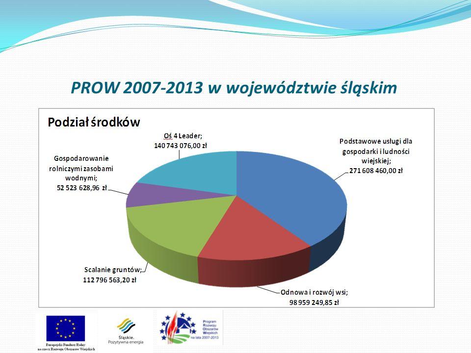 Stan wdrażania działania 4.21 Wdrażanie projektów współpracy Liczba zawartych umów – 12 Wartość zawartych umów – 492 845,80 zł Zrealizowano płatności na kwotę dofinansowania 392 551,6 zł