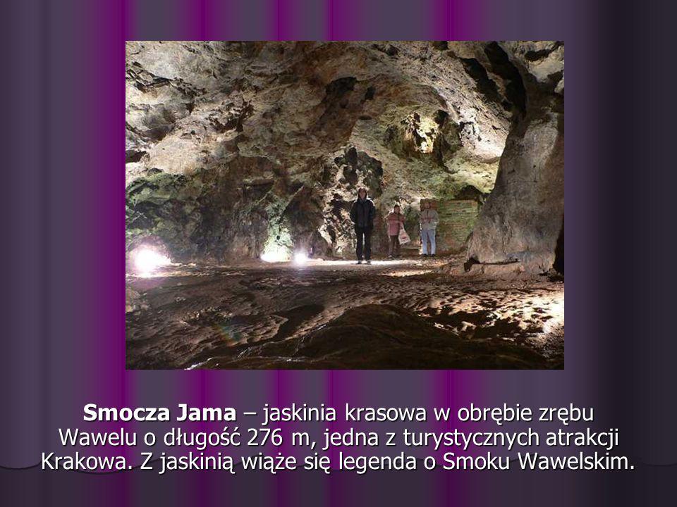 Smocza Jama – jaskinia krasowa w obrębie zrębu Wawelu o długość 276 m, jedna z turystycznych atrakcji Krakowa. Z jaskinią wiąże się legenda o Smoku Wa