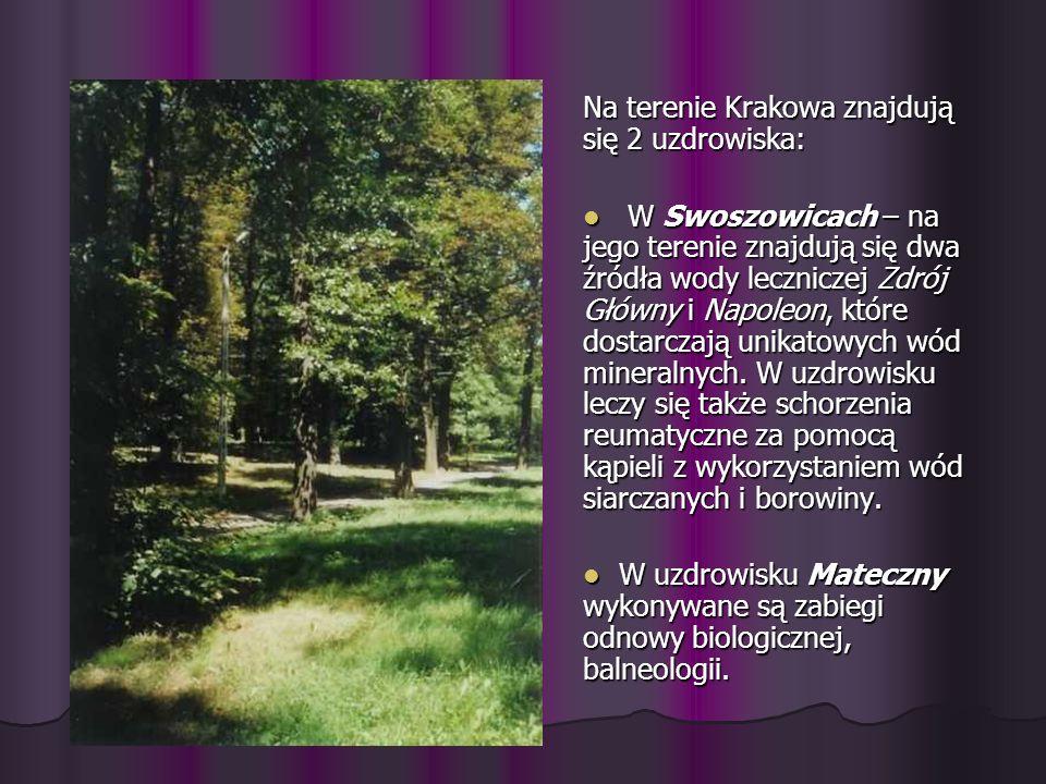 Na terenie Krakowa znajdują się 2 uzdrowiska: W Swoszowicach – na jego terenie znajdują się dwa źródła wody leczniczej Zdrój Główny i Napoleon, które
