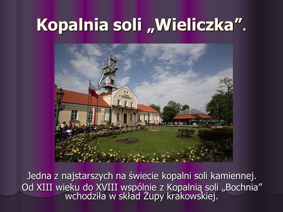 Kopalnia soli Wieliczka. Jedna z najstarszych na świecie kopalni soli kamiennej. Od XIII wieku do XVIII wspólnie z Kopalnią soli Bochnia wchodziła w s