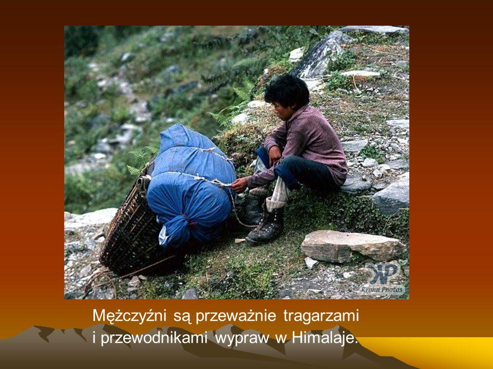 Mężczyźni są przeważnie tragarzami i przewodnikami wypraw w Himalaje.