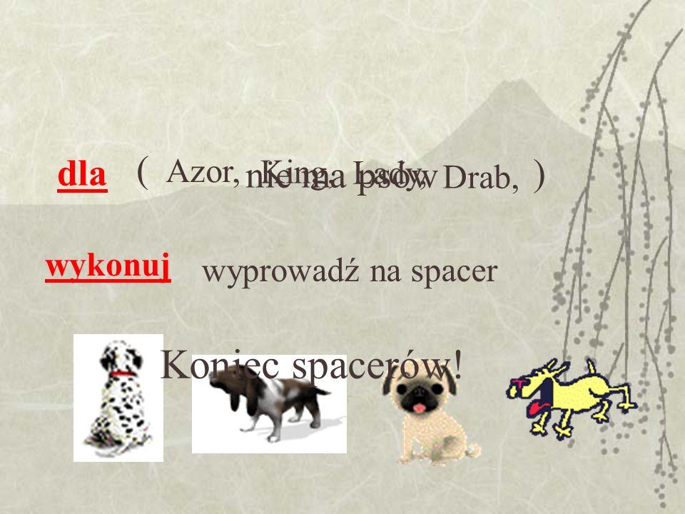 dla wykonuj wyprowadź na spacer Azor, ) King, Lady, Drab, ( Koniec spacerów! nie ma psów