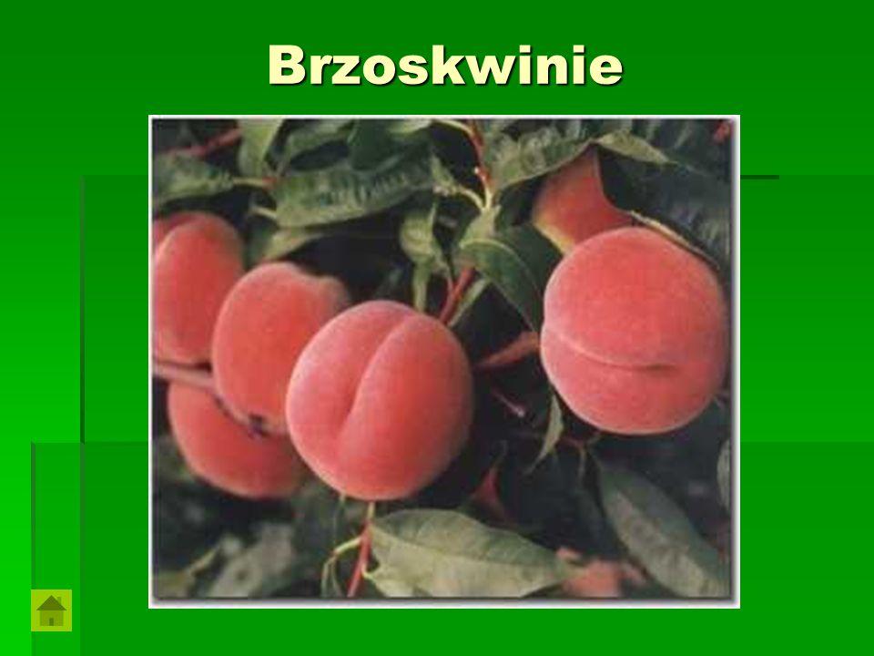 Brzoskwinie