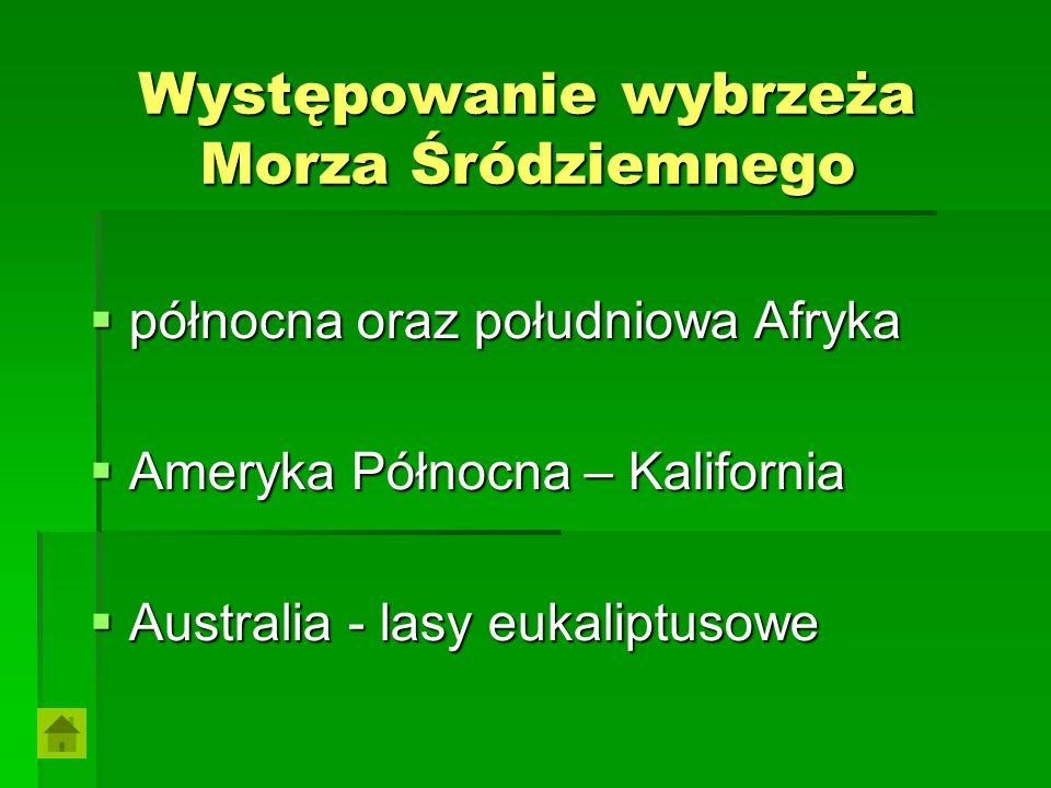 Szarańcza Szarańcza osiąga długość do 55 mm, ubarwienie zmienne z przewagą zieleni.