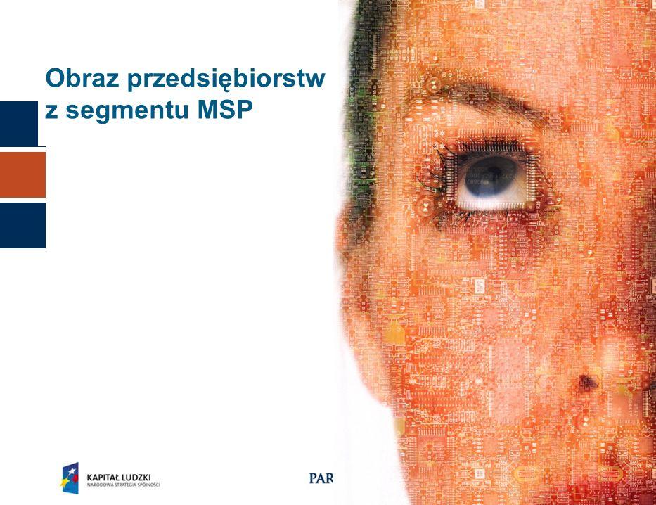10 Obraz przedsiębiorstw z segmentu MSP