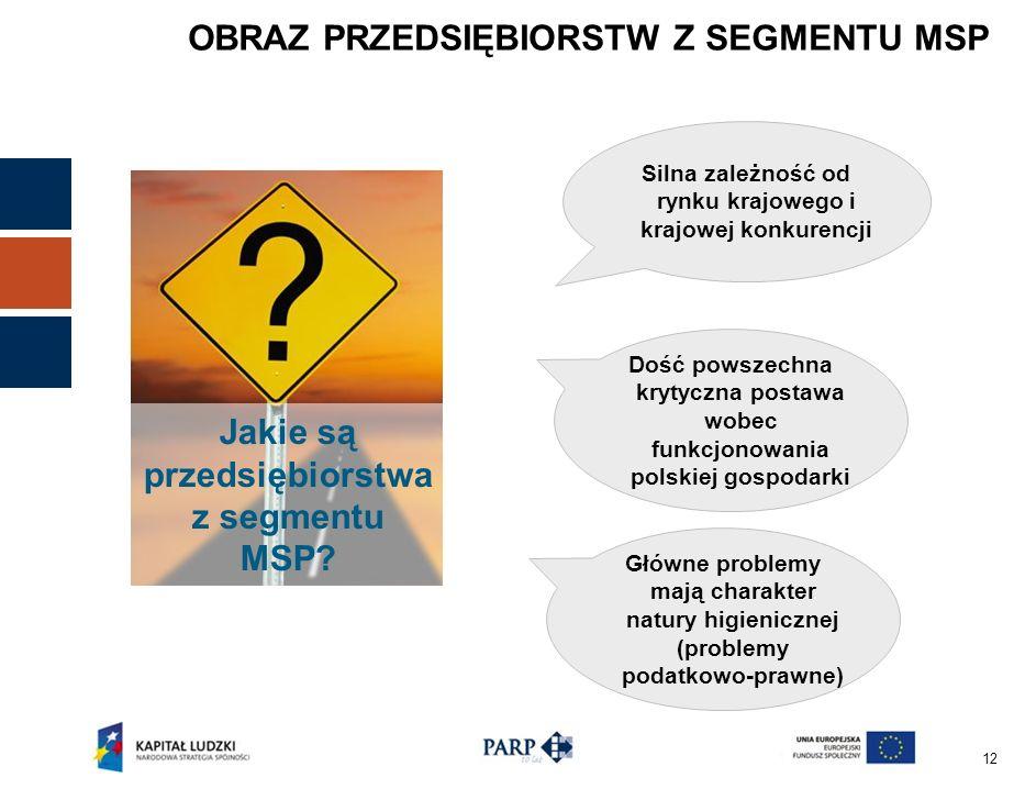 12 OBRAZ PRZEDSIĘBIORSTW Z SEGMENTU MSP Silna zależność od rynku krajowego i krajowej konkurencji Dość powszechna krytyczna postawa wobec funkcjonowania polskiej gospodarki Jakie są przedsiębiorstwa z segmentu MSP.