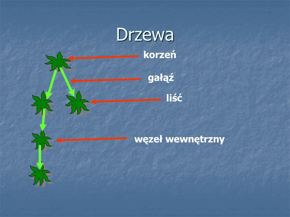 Drzewa korzeń gałąź liść węzeł wewnętrzny