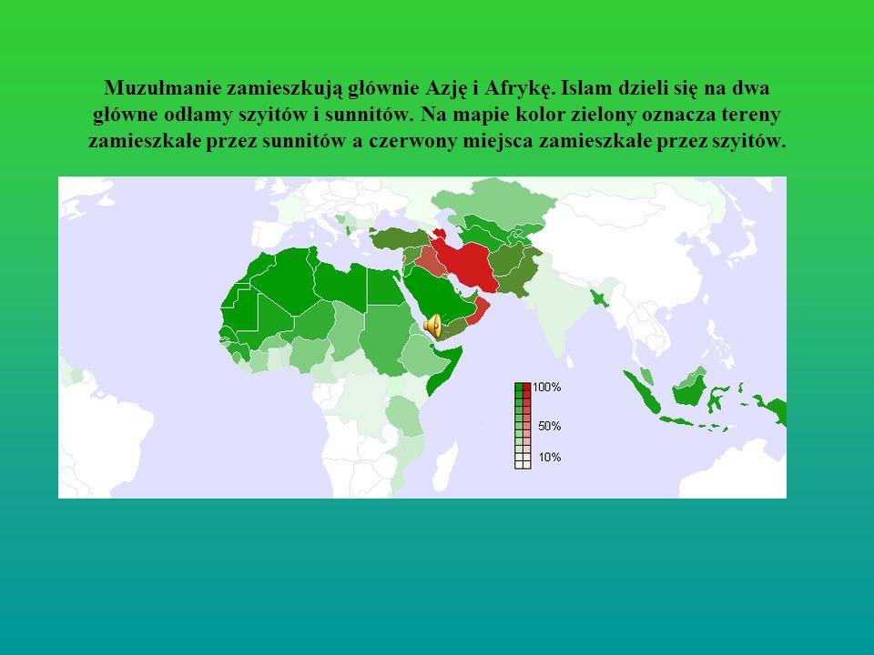 Muzułmanie zamieszkują głównie Azję i Afrykę. Islam dzieli się na dwa główne odłamy szyitów i sunnitów. Na mapie kolor zielony oznacza tereny zamieszk