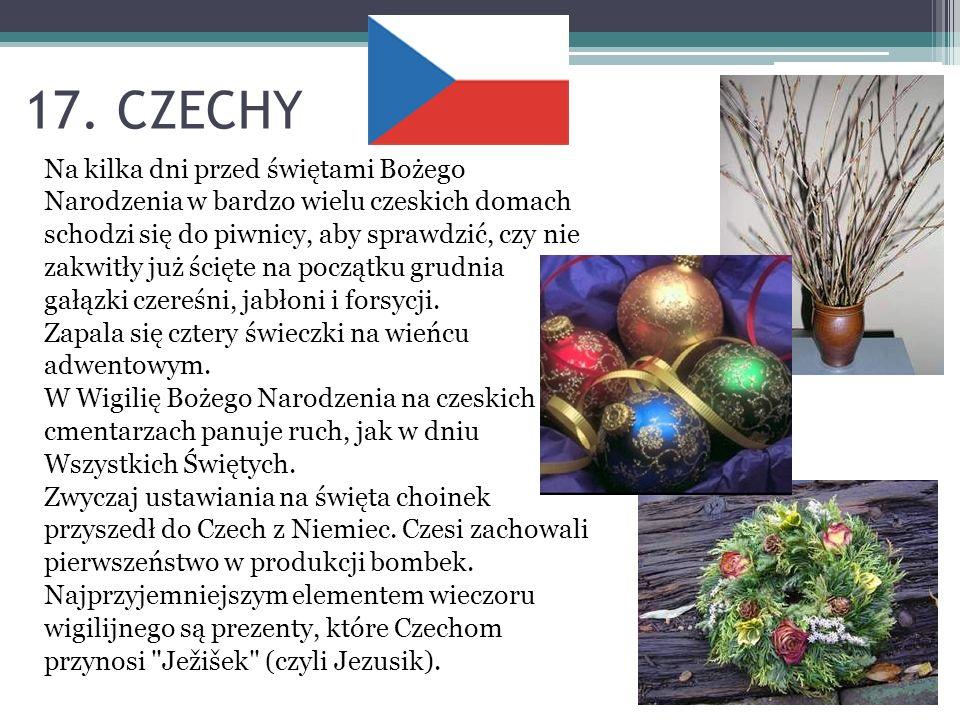 17. CZECHY Na kilka dni przed świętami Bożego Narodzenia w bardzo wielu czeskich domach schodzi się do piwnicy, aby sprawdzić, czy nie zakwitły już śc