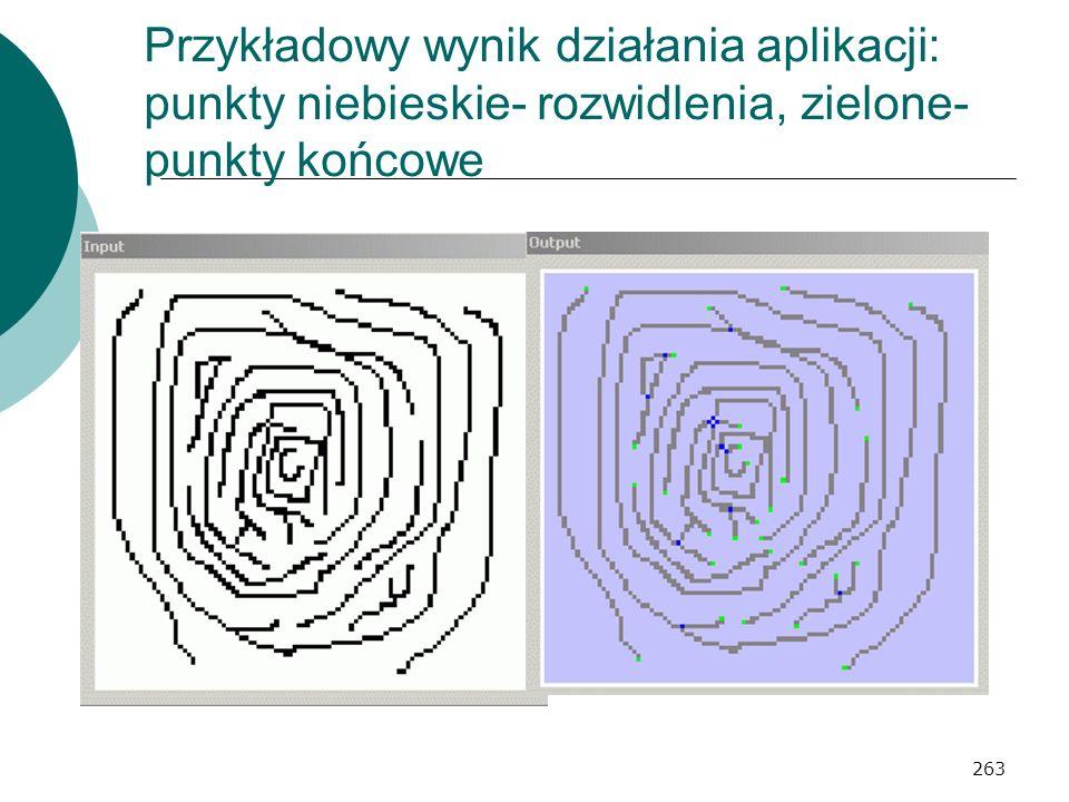 263 Przykładowy wynik działania aplikacji: punkty niebieskie- rozwidlenia, zielone- punkty końcowe