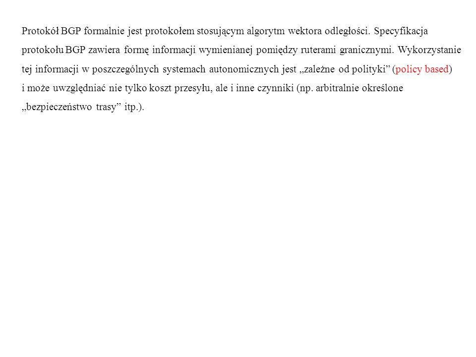 Protokół BGP formalnie jest protokołem stosującym algorytm wektora odległości. Specyfikacja protokołu BGP zawiera formę informacji wymienianej pomiędz
