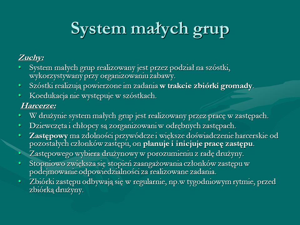 Zuchy: System małych grup realizowany jest przez podział na szóstki, wykorzystywany przy organizowaniu zabawy.System małych grup realizowany jest prze