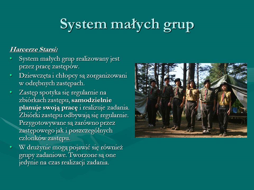 System małych grup Harcerze Starsi: System małych grup realizowany jest przez pracę zastępów.System małych grup realizowany jest przez pracę zastępów.