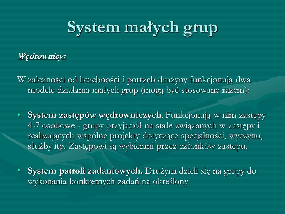 System małych grup Wędrownicy: W zależności od liczebności i potrzeb drużyny funkcjonują dwa modele działania małych grup (mogą być stosowane razem):