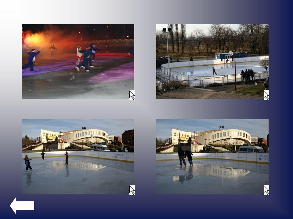 Lodowisko Lodowisko jest otwarte w okresie od listopada do marca, zgodnie z harmonogramem ustalonych przez MCKiS w Jaworznie, zwanym dalej