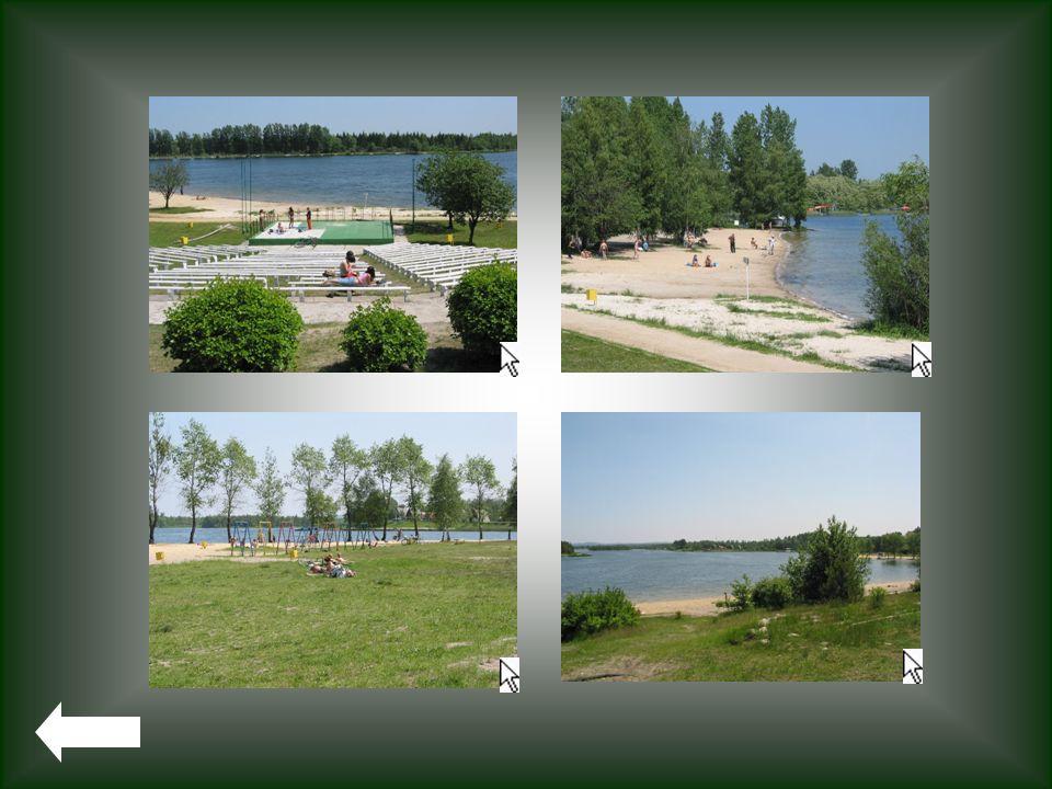 Zalew SOSINA Zbiornik ma powierzchnię 50 ha, natomiast 30 ha zajmuje kompleks leśno-łąkowy położony wokoło zbiornika. Woda w Zborniku Sosina posiada d