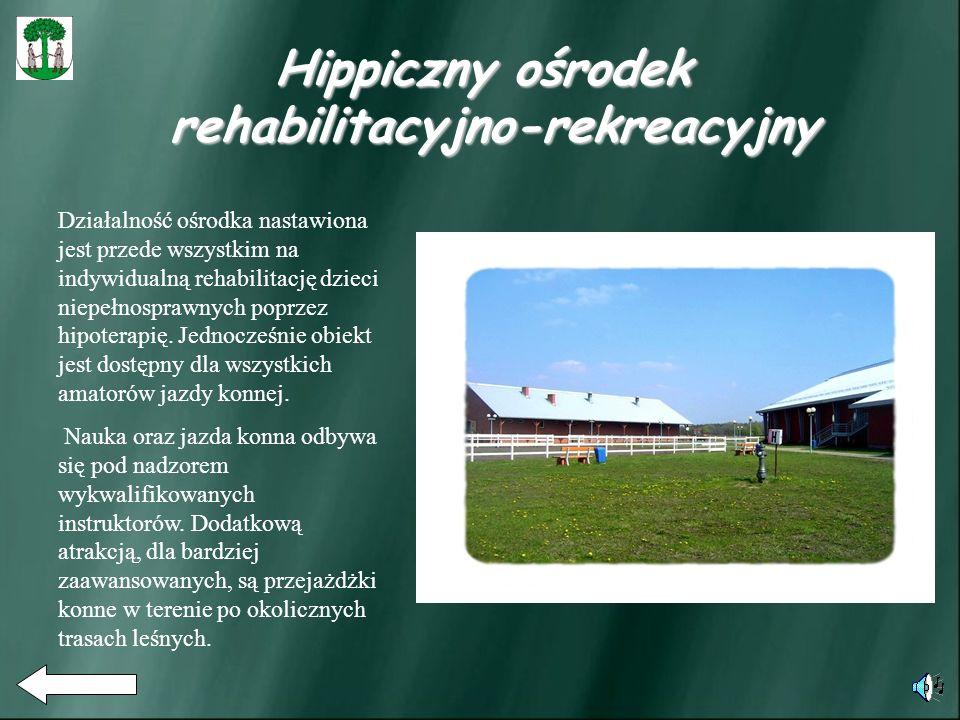 Działalność ośrodka nastawiona jest przede wszystkim na indywidualną rehabilitację dzieci niepełnosprawnych poprzez hipoterapię.