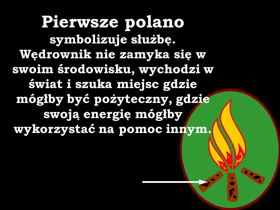 Polana ogniska - ułożone w gwiazdę tradycyjnym skautowym sposobem na długotrwałe palenie oznaczają zasady - elementy wędrowniczej pracy: