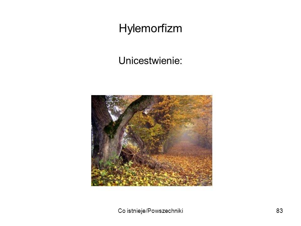Co istnieje/Powszechniki83 Hylemorfizm Unicestwienie: