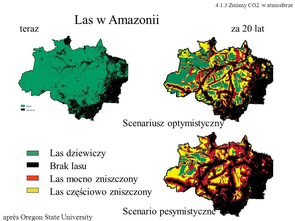 Las w Amazonii Las dziewiczy Brak lasu Las mocno zniszczony Las częściowo zniszczony terazza 20 lat Scenariusz optymistyczny Scenario pesymistyczne ap