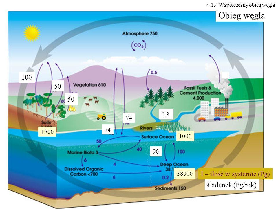 100 50 0.8 74 1000 38000 90 1500 Obieg węgla I – ilość w systemie (Pg) Ładunek (Pg/rok) 4.1.4 Współczesny obieg węgla