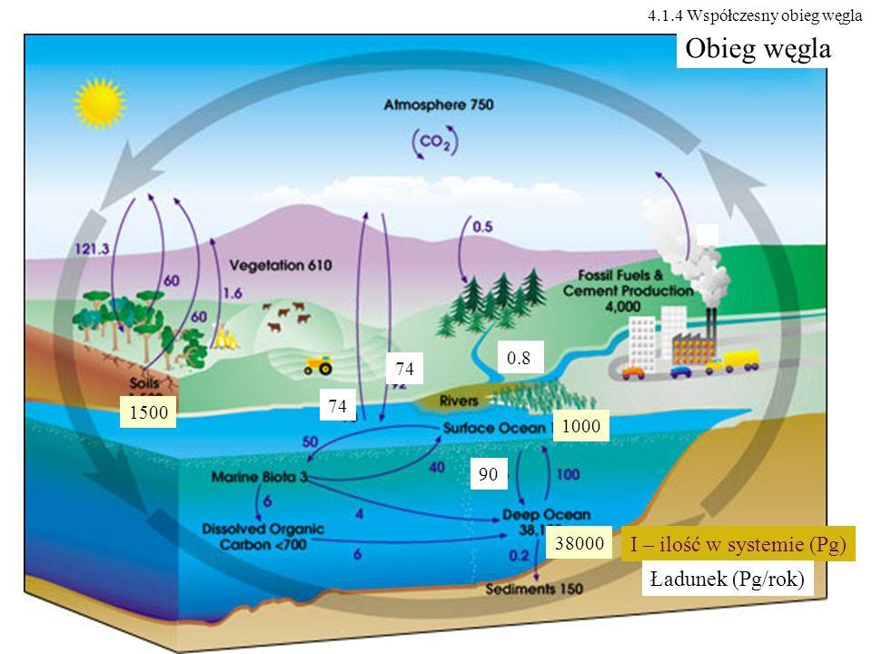 0.8 74 1000 38000 90 1500 Obieg węgla I – ilość w systemie (Pg) Ładunek (Pg/rok) 4.1.4 Współczesny obieg węgla