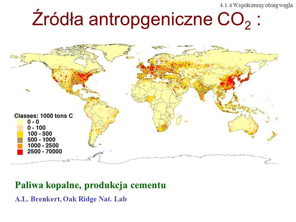 Źródła antropgeniczne CO 2 : Paliwa kopalne, produkcja cementu A.L. Brenkert, Oak Ridge Nat. Lab 4.1.4 Współczesny obieg węgla