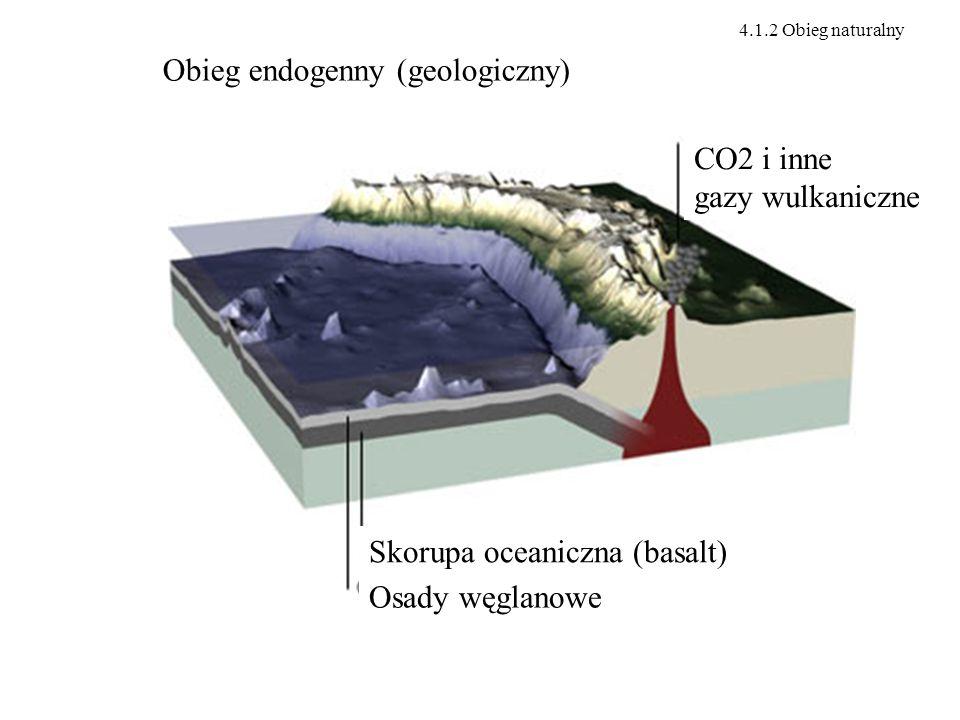 Obieg endogenny (geologiczny) CO2 i inne gazy wulkaniczne Skorupa oceaniczna (basalt) Osady węglanowe 4.1.2 Obieg naturalny