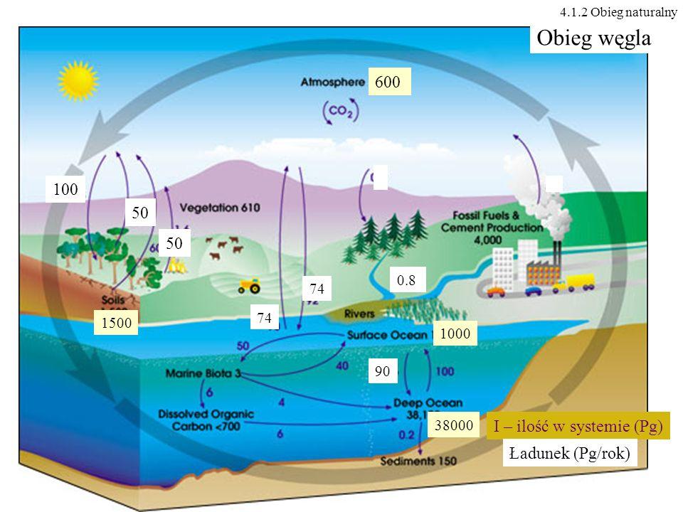 600 100 50 0.8 74 1000 38000 90 1500 Obieg węgla I – ilość w systemie (Pg) Ładunek (Pg/rok) 4.1.2 Obieg naturalny