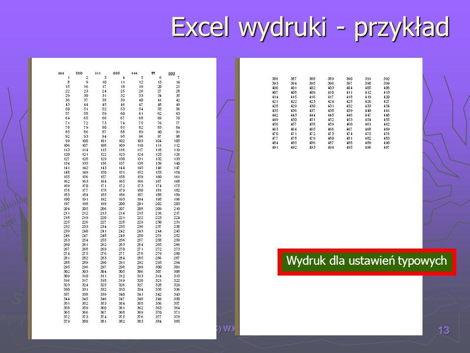 (C) W.K. 2007 13 Excel wydruki - przykład Wydruk dla ustawień typowych