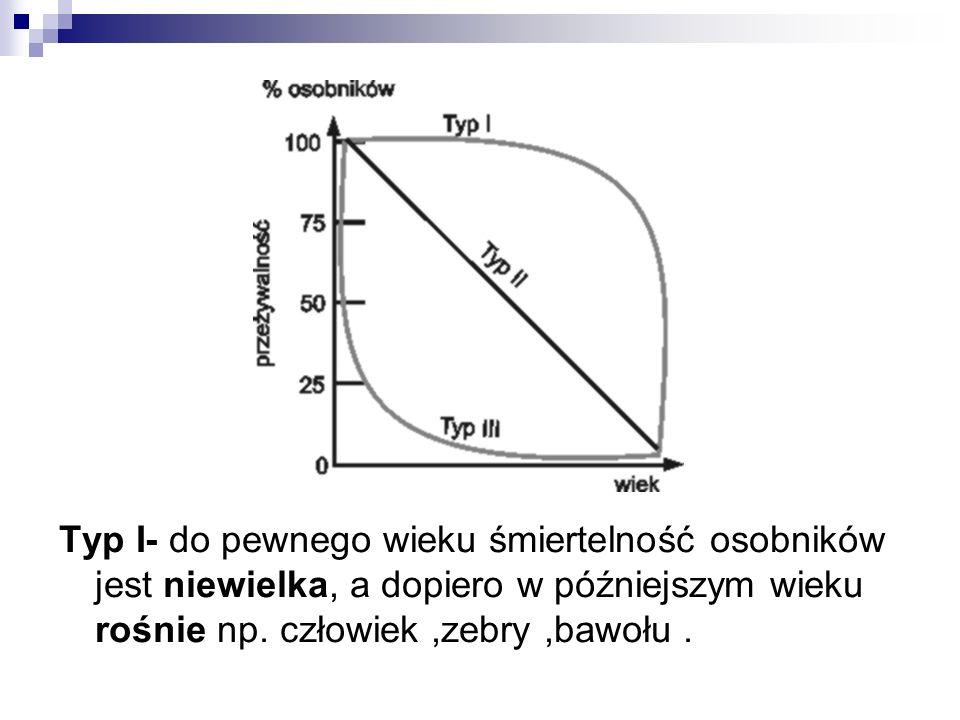 Typ I- do pewnego wieku śmiertelność osobników jest niewielka, a dopiero w późniejszym wieku rośnie np. człowiek,zebry,bawołu.