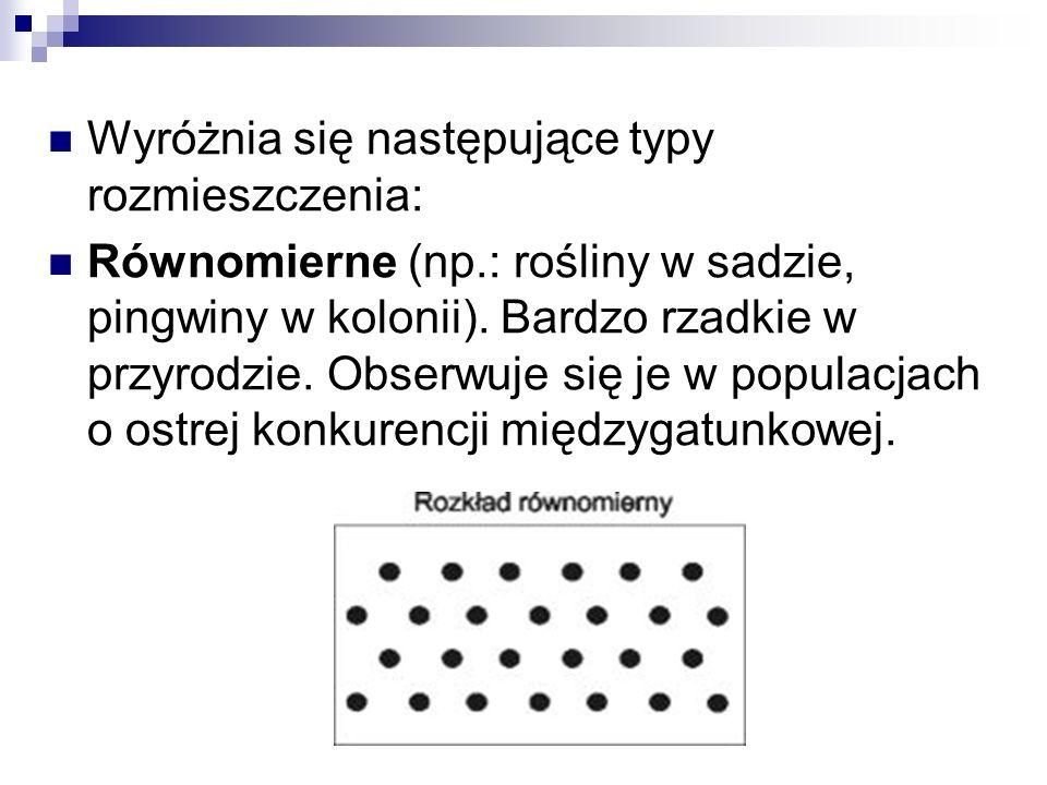 Wyróżnia się następujące typy rozmieszczenia: Równomierne (np.: rośliny w sadzie, pingwiny w kolonii). Bardzo rzadkie w przyrodzie. Obserwuje się je w
