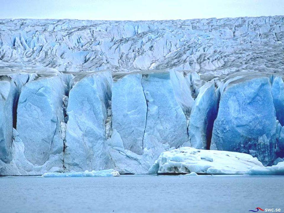 Zmiany klimatu są naturalne Jeżeli w pełni zrozumiemy prawa fizyki, będziemy mogli kontrolować zjawiska atmosferyczne Ktoś musi zmniejszyć emisję gazów cieplarnianych Chowamy głowę w piasek