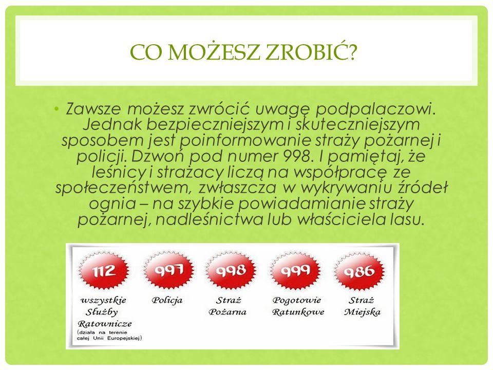 KARY DLA ROLNIKÓW Rolnikom wypalającym trawy możesz przypomnieć o tym, że po akcesji Polski z Unią Europejską producent rolny będzie mógł uzyskać dopłaty do gruntów rolnych, warunki i tryb ich uzyskania określa Ustawa z dnia 18 grudnia 2003 r.